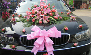 Wedding Cars Hire Sydney